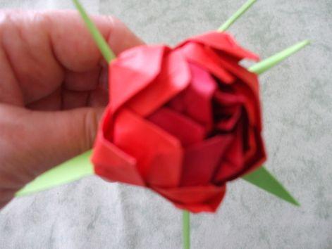 origami_rozsa_009.jpg